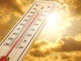 Cách phòng tránh đột quỵ mùa nắng nóng cho người lớn tuổi