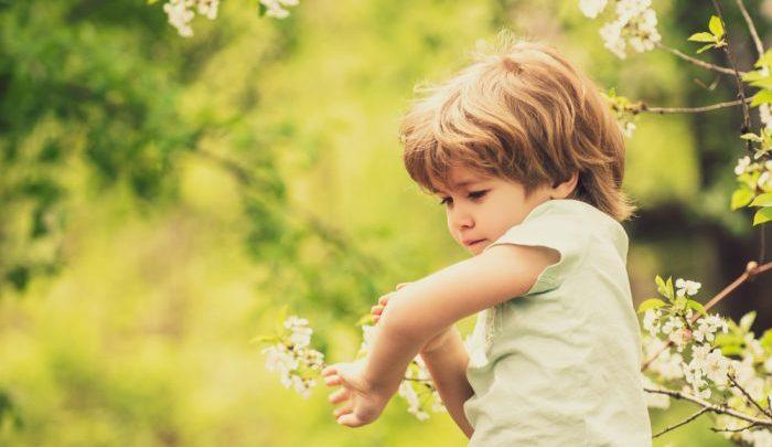 Chia sẻ cách phòng và xử lý khi trẻ nhỏ bị côn trùng đốt, cắn
